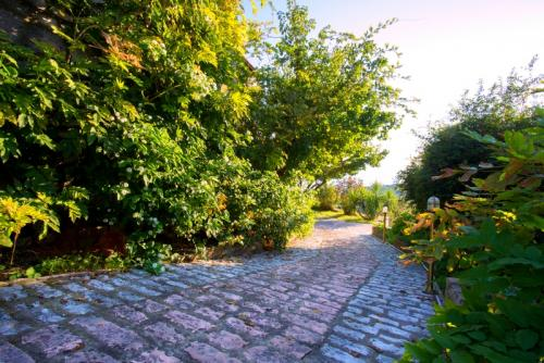 Villa Sandy-Sivota-Epirus-Greece-Path-Hotel
